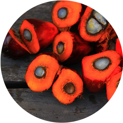 Sustainable RSPO Palm Oil